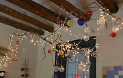Ute Levi used a pine tree branch from a fallen tree to make a light over a long countertop in the dining room of her home at 10 LaSalle Street in the tiny village of Elsah, Illinois. The house is within walking distance of the Mississippi River along the Great River Road north of Alton. <br /> Photo by Tim Vizer