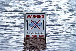 Warning - Do Not Eat Fish Sign