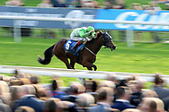 ARROWTOWN (5) ridden by Nathan Evans and trained by Michael Easterby winning The Coral Stayers Handicap Stakes over 2m (£15,000)    during the October Finale meeting at York Racecourse, York, United Kingdom on 13 October 2018. Pic Mick Atkins