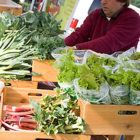 This farm's table has all the spring market staples: rhubarb, lettuce, broccoli and carrots.