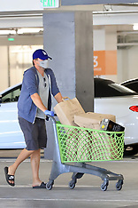Actor Leo DiCaprio looks very much domesticated - 11 June 2020