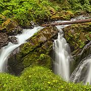 Sol Duc Falls - Olympic National Park, WA