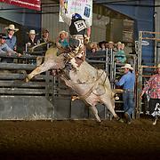 17-J06-GLT HS Bull Riding Perf