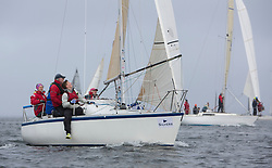 Day one of the Silvers Marine Scottish Series 2015, the largest sailing event in Scotland organised by the  Clyde Cruising Club<br /> Racing on Loch Fyne from 22rd-24th May 2015,<br /> <br /> GBR7029, Farr e Nuff, John Kent, LSC/FYC, Farr 727<br /> <br /> <br /> Credit : Marc Turner / CCC<br /> For further information contact<br /> Iain Hurrel<br /> Mobile : 07766 116451<br /> Email : info@marine.blast.com<br /> <br /> For a full list of Silvers Marine Scottish Series sponsors visit http://www.clyde.org/scottish-series/sponsors/