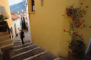Street scene with steps and flowers in Rivello, Italy, on the Basilicata Coast.