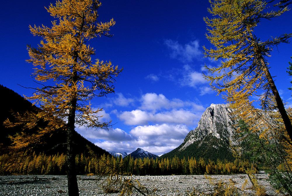 Autumn in Mongolia