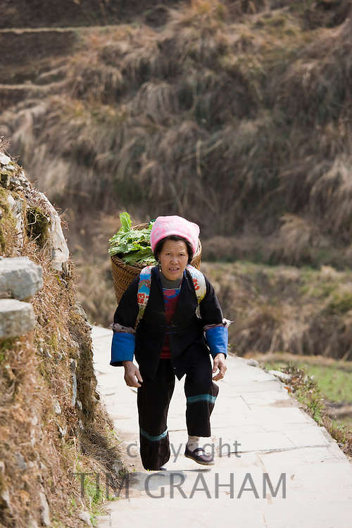 Woman carrying vegetables in pannier basket by mountian village of Ping An, Guilin, China