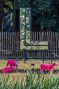 The famous dyed sheep and the reflective Latitude sign - The 2017 Latitude Festival, Henham Park. Suffolk 14 July 2017