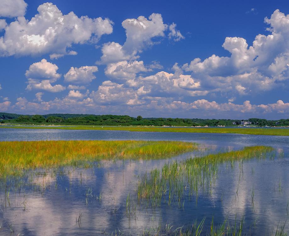 Blue sky & clouds reflected in high water, grasses & far treeline, Charlestown, RI