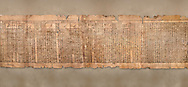 """Ancient Egyptian Book of the Dead papyrus - Spell 81a assuming the form of a lotus associated with the sun god, Iufankh's Book of the Dead, Ptolemaic period (332-30BC).Turin Egyptian Museum. <br /> <br /> The spell reads """" I am a pure lotus that has ascended by the Sinlight and ia at Ra's nose. I spend my time shedding it on Horus. I am the pure lotus that ascended from the field"""". <br /> <br /> The translation of  Iuefankh's Book of the Dead papyrus by Richard Lepsius marked a truning point in the studies of ancient Egyptian funereal studies. .<br /> <br /> If you prefer to buy from our ALAMY PHOTO LIBRARY  Collection visit : https://www.alamy.com/portfolio/paul-williams-funkystock/ancient-egyptian-art-artefacts.html  . Type -   Turin   - into the LOWER SEARCH WITHIN GALLERY box. Refine search by adding background colour, subject etc<br /> <br /> Visit our ANCIENT WORLD PHOTO COLLECTIONS for more photos to download or buy as wall art prints https://funkystock.photoshelter.com/gallery-collection/Ancient-World-Art-Antiquities-Historic-Sites-Pictures-Images-of/C00006u26yqSkDOM"""