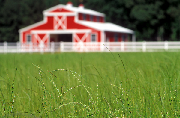 Stock photo of a hay field with barn and fence in East Texas