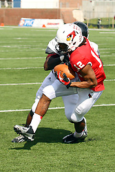 20 October 2012:  Tyrone Walker grabs a reception that results in a touchdown defended by Sybhrain Berry during an NCAA Missouri Valley Football Conference football game between the Missouri State Bears and the Illinois State Redbirds at Hancock Stadium in Normal IL