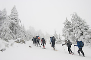 A caravan of snowshoers march up the snowy slopes of Mount Persis, Glacier peak Wilderness, Washington. The trees around them are frozen, covered in hoar frost.