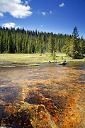 Firehole River, Yellowstone National  Park, Wyoming.
