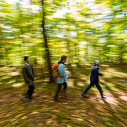 Three young men walk on a forest trail in Amesbury, Massachusetts.