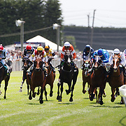 The horses hit the finish line during a day at the Races at Ascot Park, Invercargill, Southland, New Zealand. 10th December 2011. Photo Tim Clayton