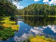 Wigierski Park Narodowy - jezioro Suchary, Polska<br /> Wigry National Park - Suchary lake, Poland