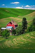 Farm buildings in the palouse area of eastern Washington