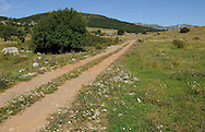 Abandoned farmland, due to globalisation, socio-cultural reasons, the Bosnian war and minefields from it, Velebit Nature Park, Dalmatian coast, Croatia
