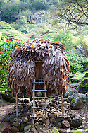 Wiamea Valley on Oahu is an area of historic cultural significance on the North Shore of Oahu.  Pictured here are some of the structures and plants that are critical to the Hawaiian culture.