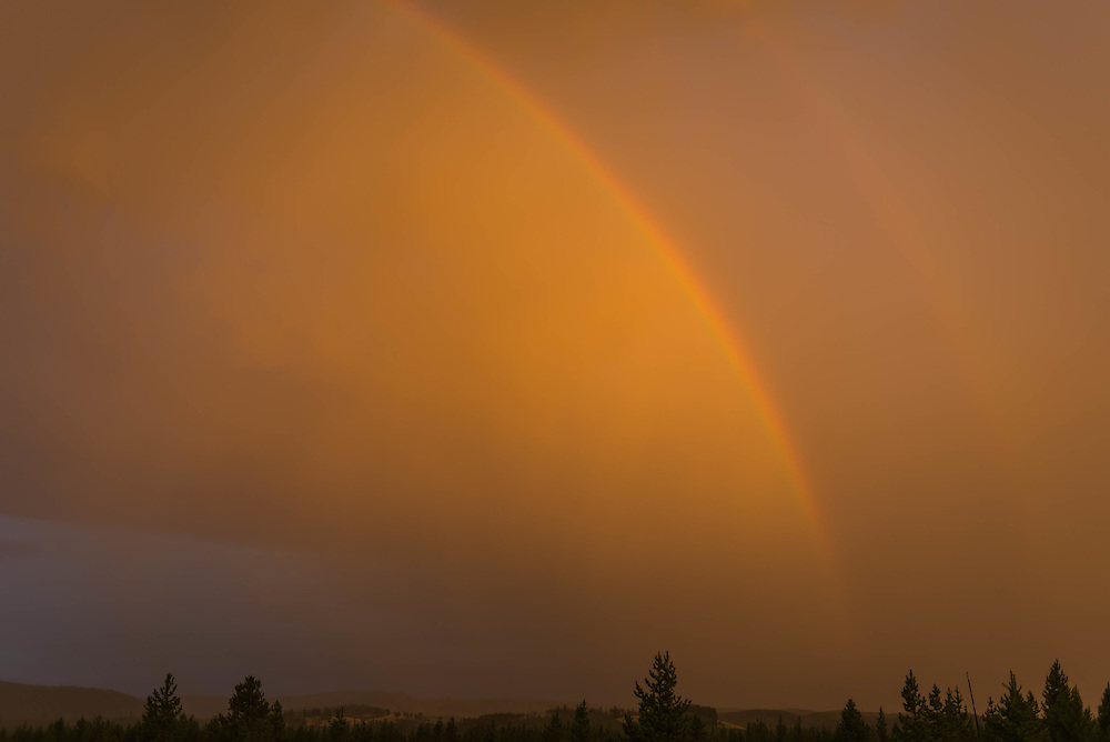 A passing storm makes for a golden sky and sets a double rainbow in the clouds, Yellowstone National Park