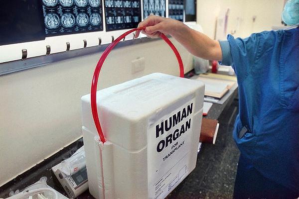 Nederland, Nijmegen, 26-2-2009Een koelbox voor het vervoer van donororganen, staat klaar in de operatiekamer.Foto: Flip Franssen