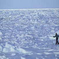 Victor Boyarsky skis thru pressure ridge on frozen Arctic Ocean, NWT, Canada.
