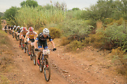 Nico Bell of Team RECM leads a bunch during stage 1 of the 2014 Absa Cape Epic Mountain Bike stage race held from Arabella Wines in Robertson, South Africa on the 24 March 2014<br /> <br /> Photo by Greg Beadle/Cape Epic/SPORTZPICS
