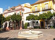 Hotel Palacio Alcazar in historic buildings, Plaza de la Alianza, Seville, Spain