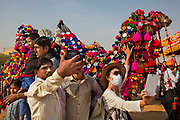 Tourist crowd around to take selfies during the camel dressing competition at the Desert Festival on 29th January 2018  in Jaisalmer, Rajasthan, India. It is an annual event that take place in February month in the beautiful city Jaisalmer. It is held in the Hindu month of Magh February, three days prior to the full moon.