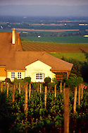 Domain Drouhin's winery and tasting room located in Dundee, Oregon.