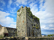 Taaffe's Castle, Carlingford, Louth – c.1520,