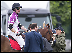 May 25, 2018 - Cirencester, United Kingdom - Image licensed to i-Images Picture Agency. 25/05/2018. Cirencester , United Kingdom. Zara Tindall  with the Duke of Cambridge on his horse as he takes part in the  Jerudong Trophy charity polo match at Cirencester Park Polo Club, Gloucestershire, United Kingdom. (Credit Image: © Stephen Lock/i-Images via ZUMA Press)