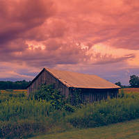"""""""Oh Glorious Morning 2""""<br /> <br /> What glory you'll find in the sky at sunrise on a beautiful Michigan farm!!"""