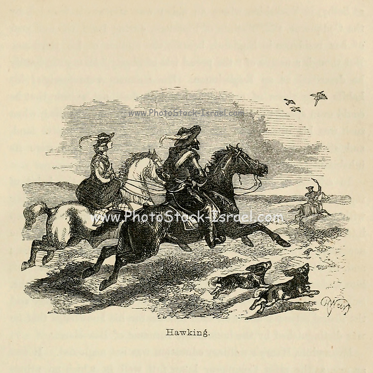 Hawking From the Book 'Danes, Saxons and Normans : or, Stories of our ancestors' by Edgar, J. G. (John George), 1834-1864 Published in London in 1863