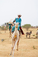 Niger. Gerewol, assemblee generale des Peuls Wadabee d Afrique de l'Ouest. Peul Bororo. Course de chameau. // Niger. A Wodaabe-Bororo man with his face painted for the annual Gerewol male beauty contest. Gerewol, general reunion of West Africa for the Wadabee Peuls (Bororo peul). Camel race.