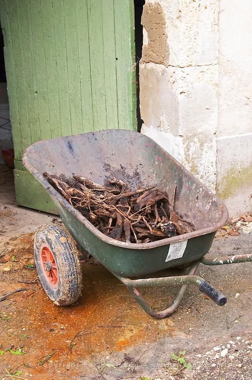 Mas de Perry, Mas Nicot. Terrasses de Larzac. Languedoc. A wheelbarrow filled with vine twig cuttings. France. Europe.