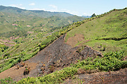 Landscape showing agricultural method of slash and burn, to clear forest area ready for cultivation, Manambato area, Madagascar, example of rainforest destruction