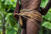 Dani tribe man<br /> Budaya village<br /> Suroba<br /> Trikora Mountains<br /> West Papua<br /> Indonesia