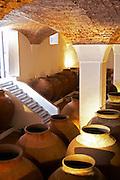 amphora shaped earthenware tanks adega jose de sousa rosado fernandes alentejo portugal