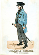 William Burke (1792-1829) Irish murderer and body snatcher.  Accomplice of William Hare (1790-1860) in murders and stealing of corpses to supply bodies for dissection by Edinburgh medical students and anatomists. Hanged for his crimes, while Hare turned K