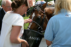 A horse drinks from a bucket after the first race during day two of Royal Ascot at Ascot Racecourse.