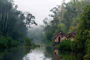 Rainforest and small cabin along the Sekonyer River (a tributary to Kumai River) in Kalimantan (Tanjung Puting National Park), southern Borneo.