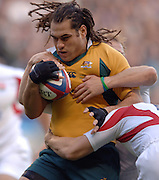 2005 Rugby, Investec Challenge, England vs Australia, George SMITH, RFU Twickenham, ENGLAND:     12.11.2005   © Peter Spurrier/Intersport Images - email images@intersport-images..