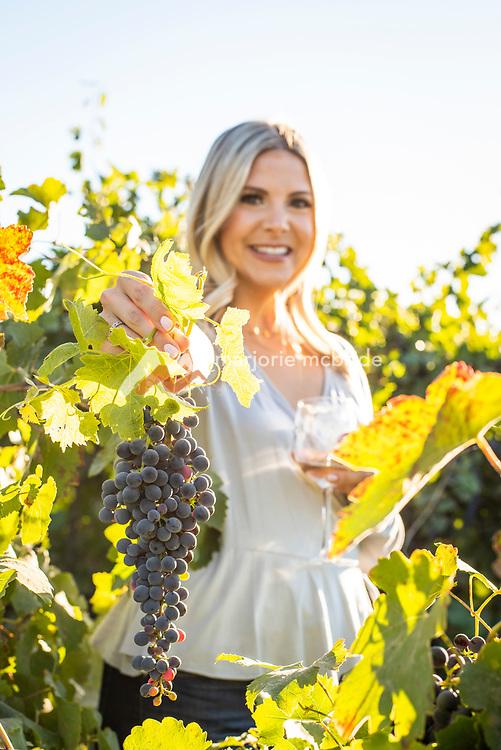 Woman holding Syrah grapes at Holeinsky Vineyard and Winery in Buhl, Idaho.