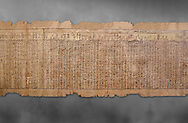 Ancientt Egyptian Book of the Dead papyrus - Spell 17 about the God Atum, Iufankh's Book of the Dead, Ptolemaic period (332-30BC).Turin Egyptian Museum. Grey Background<br /> <br /> the spell is one of the ongest in the Book of the Dead and one of its most complex frequently used in many other Books of the Dead. It is about the nature of the creator God Atum and is meant to make sure the deceased is capable of demonstrating his of her knowledge of religious secrets<br /> <br /> The translation of  Iuefankh's Book of the Dead papyrus by Richard Lepsius marked a truning point in the studies of ancient Egyptian funereal studies. .<br /> <br /> If you prefer to buy from our ALAMY PHOTO LIBRARY  Collection visit : https://www.alamy.com/portfolio/paul-williams-funkystock/ancient-egyptian-art-artefacts.html  . Type -   Turin   - into the LOWER SEARCH WITHIN GALLERY box. Refine search by adding background colour, subject etc<br /> <br /> Visit our ANCIENT WORLD PHOTO COLLECTIONS for more photos to download or buy as wall art prints https://funkystock.photoshelter.com/gallery-collection/Ancient-World-Art-Antiquities-Historic-Sites-Pictures-Images-of/C00006u26yqSkDOM