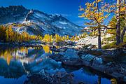 Tamaracks reflecting in Lake Leprechaun in Washington's Enchantment Lakes wilderness area