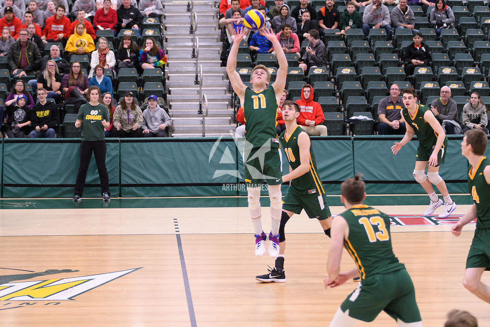 3rd year setter Michael Corrigan (11) of the Regina Cougars in action during Men's Volleyball home game on November 18 at Centre for Kinesiology, Health and Sport. Credit: /Arthur Images