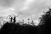 Un territorio verde delimita nuestro hogar, los niños trepan. Detrás, en el parque, se alcanzan a ver las antenas 4G.