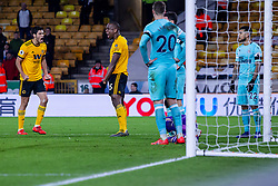 February 11, 2019 - Wolverhampton, England, United Kingdom - Willy Boly of Wolverhampton Wanderers celebrates with Raul Jimenez of Wolverhampton Wanderers after scoring in injury time to save a point during the Premier League match between Wolverhampton Wanderers and Newcastle United at Molineux, Wolverhampton on Monday 11th February 2019. (Credit Image: © Mi News/NurPhoto via ZUMA Press)